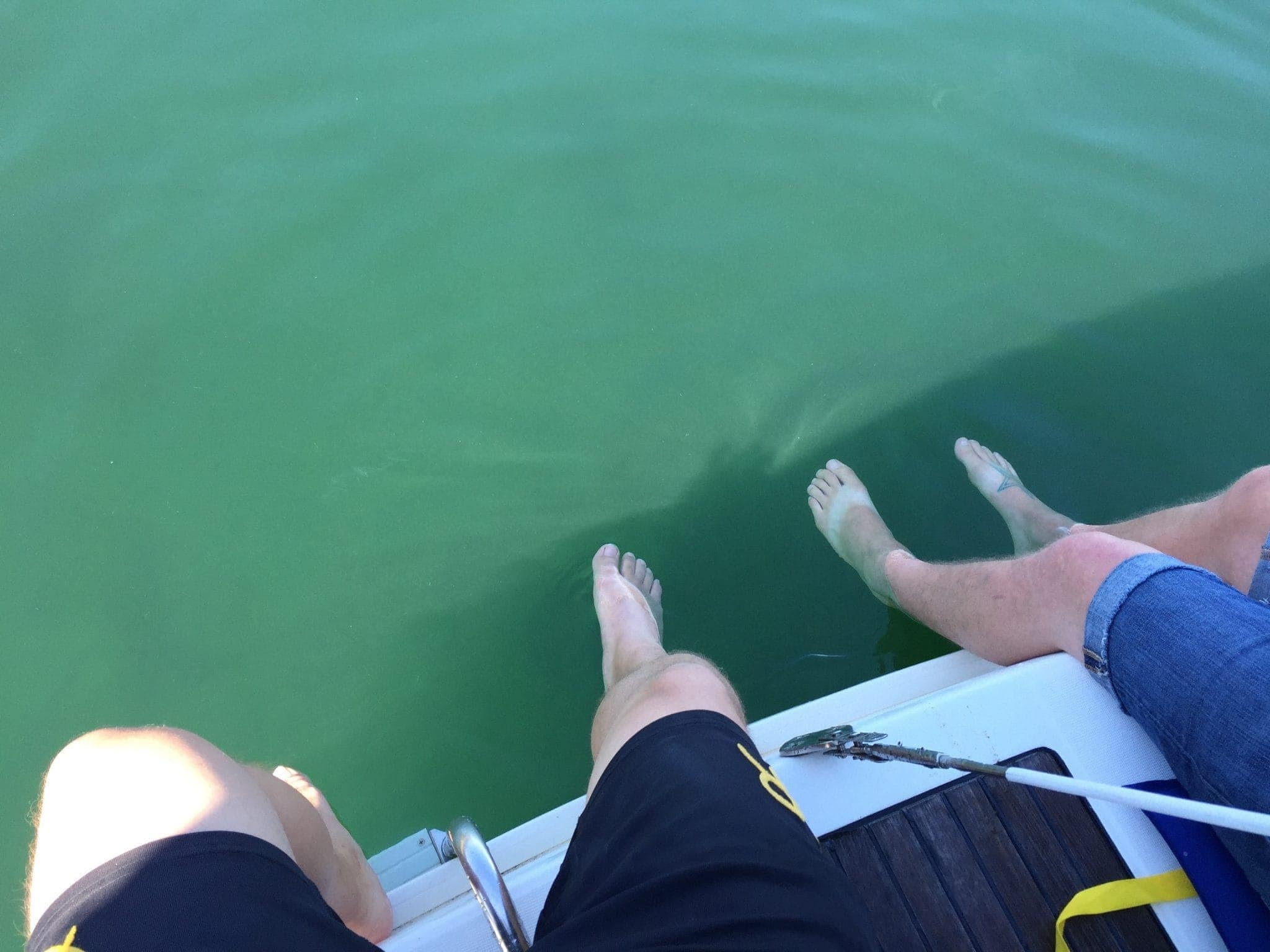 Cooling off near Blake Island