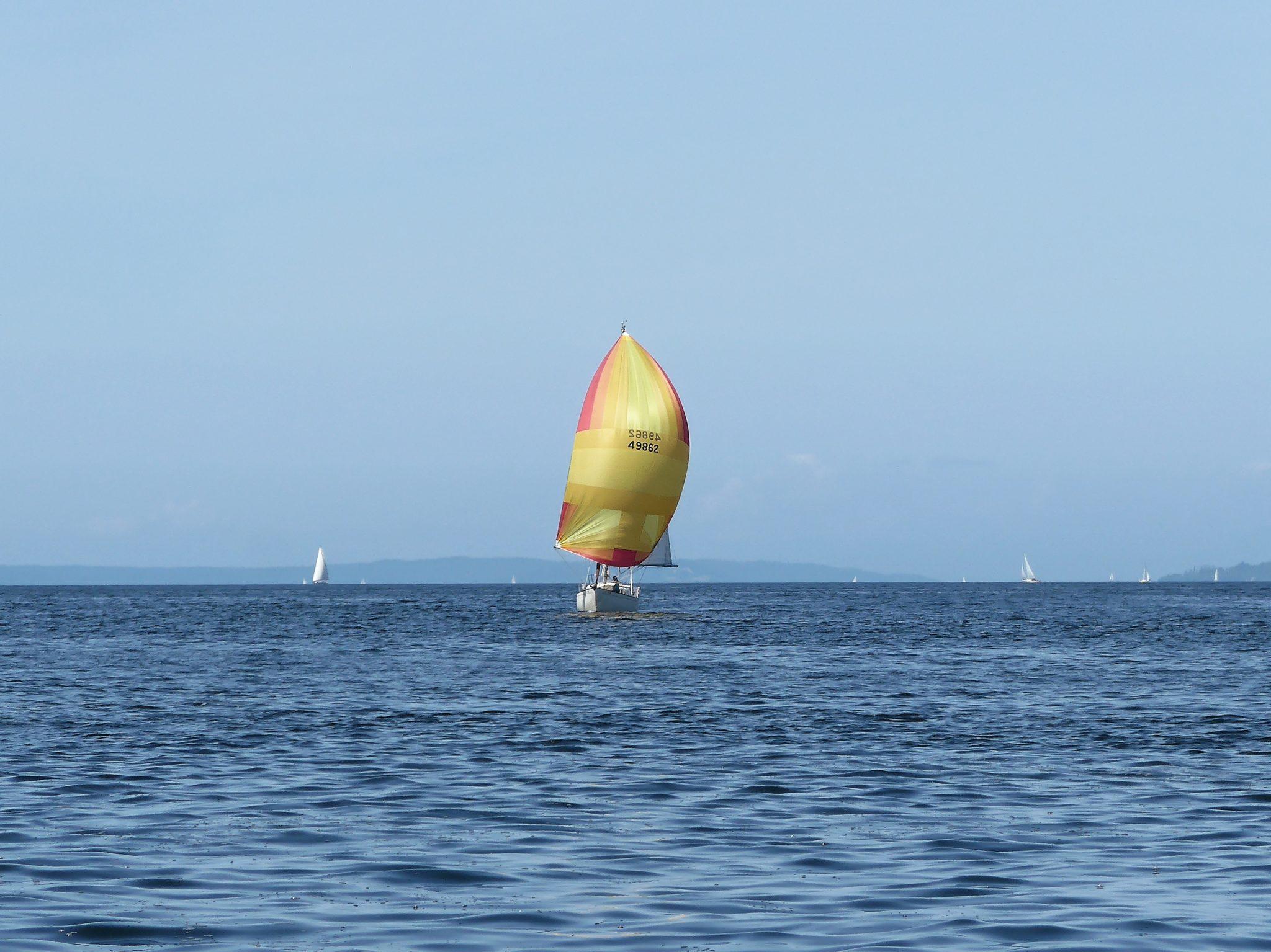 sailboat spinnaker on way to winslow wharf marina