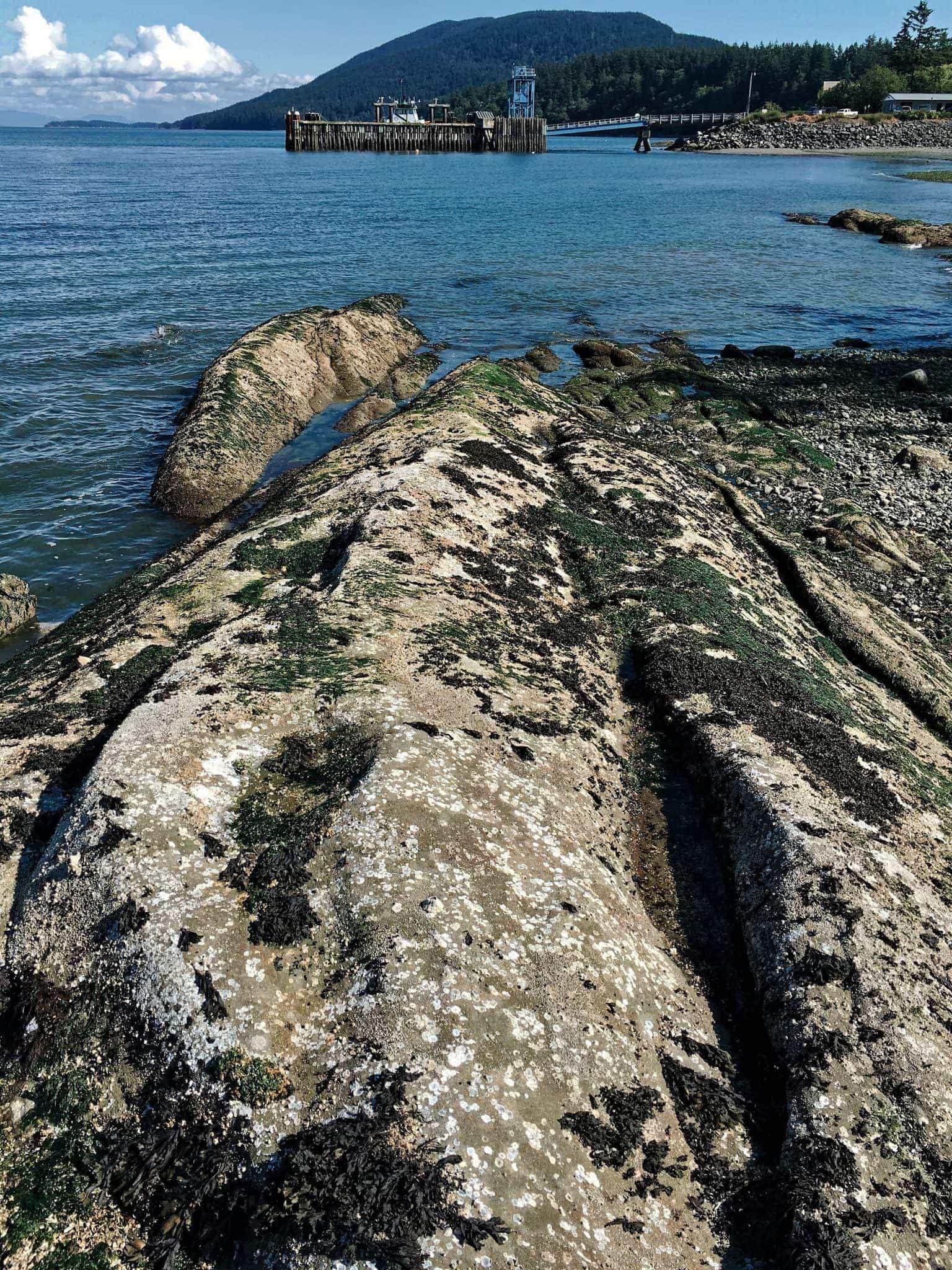 Beach rocks and view towards Lummi Island Ferry