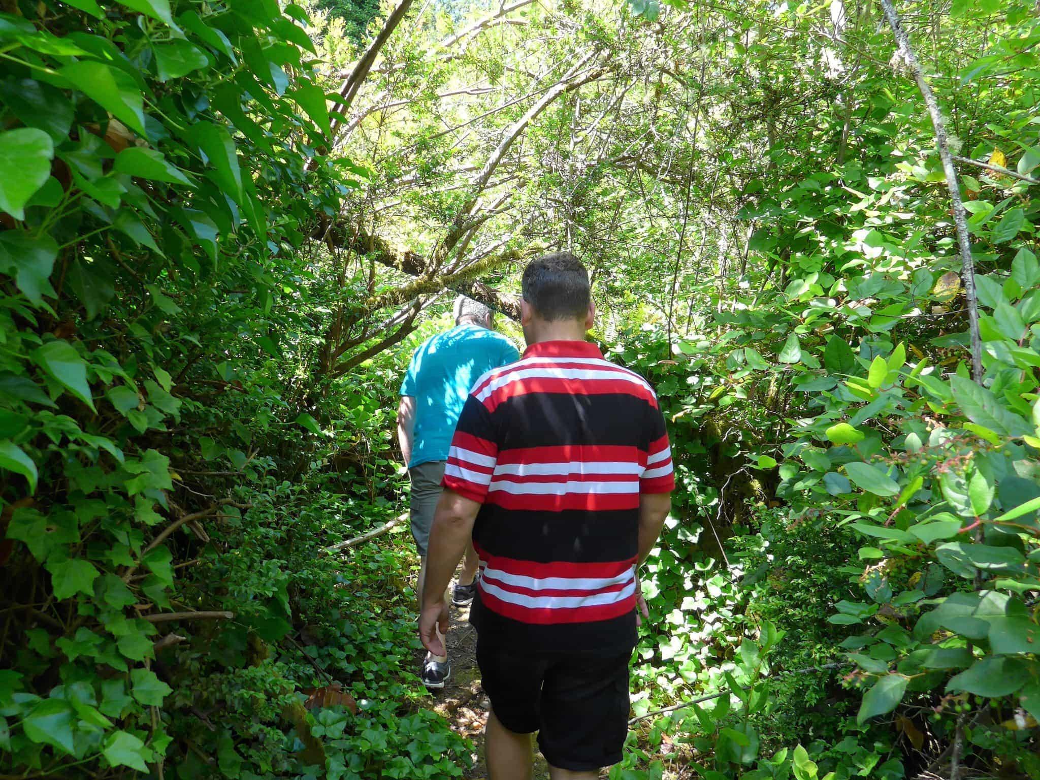 Eagle Island trails