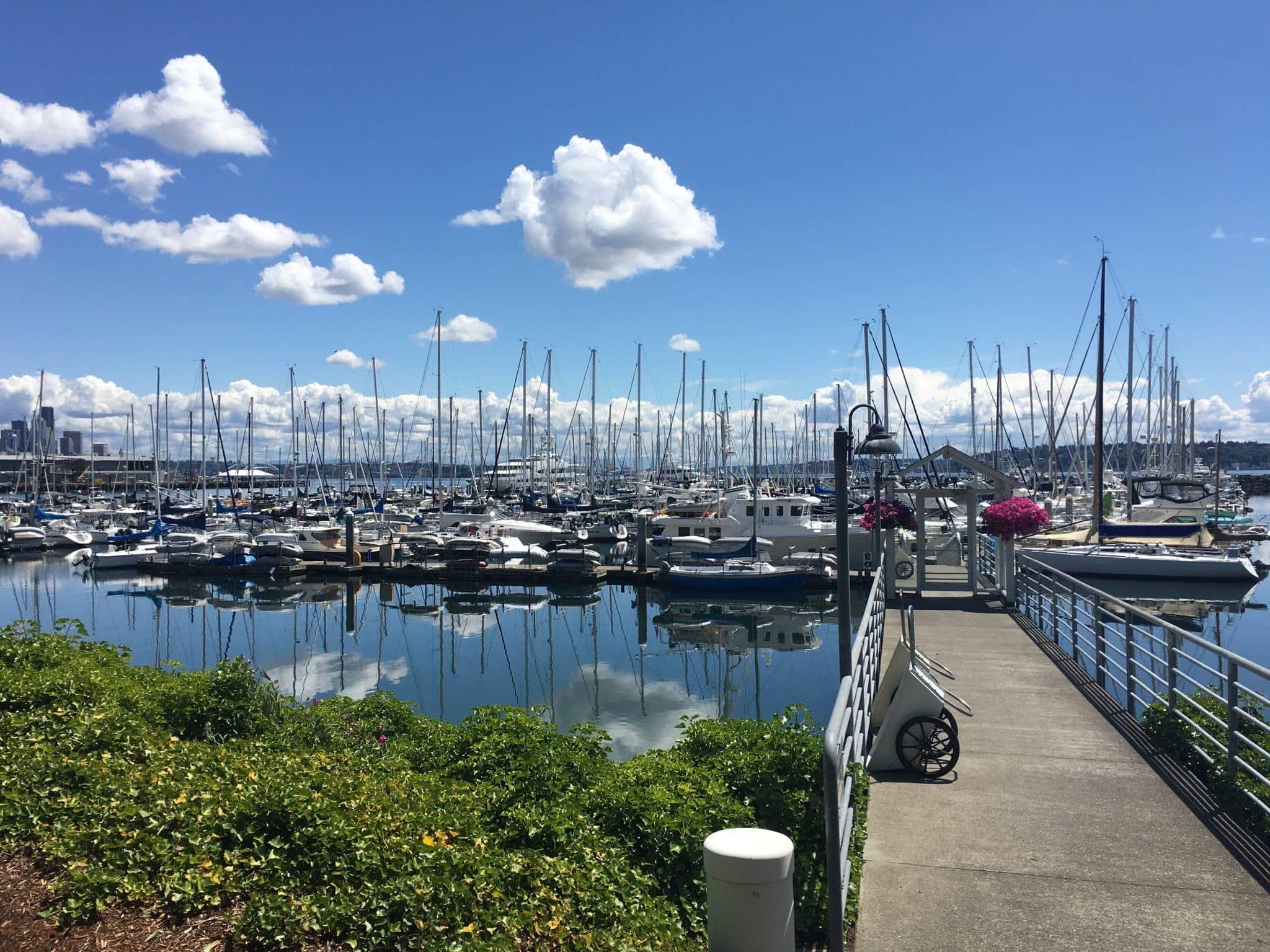 My home marina, Elliott Bay